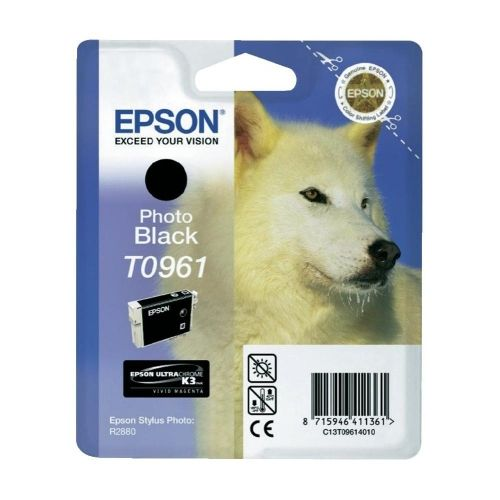 Консуматив Epson T096 Photo Black Cartridge - Retail Pack (untagged) for Epson Stylus Photo R2880